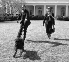 Republican Presidents, Dog Days, Classic, Dogs, Summer, Fictional Characters, Instagram, Derby, Summer Time