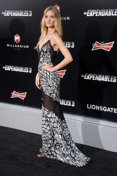 Rosie Huntington-Whiteley looked flawless from every angle thanks to a sexy lace detail in the back of her Emilio Pucci gown at the LA premiere of The Expendables 3.