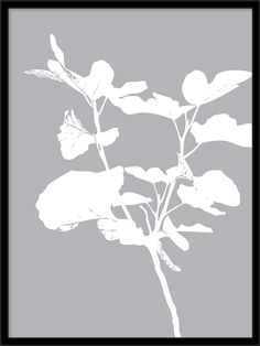 Here you will find floral prints and posters. Stylish posters with botanical prints of colorful plants. Buy botanical posters online from Desenio. Botanical Prints, Floral Prints, Gold Poster, Buy Posters Online, Nordic Interior, Colorful Plants, Illustration, Scandinavian, Wall Art