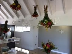 Hanging Proteas