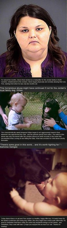Dog warns parents that babysitter was abusing child (Can I point out her name was Khan? No good comes from that name).