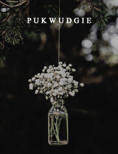 Pukwudgie Aesthetics ~Pukwudgie~