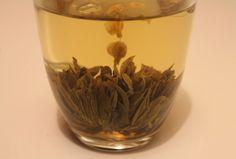 Quoi de plus magique que l'ouverture délicate d'une fleur de thé ?