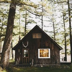 Still dreaming.  Plan to fall in love and build a beautiful cabin with my smokin' hott man, live in the woods and just ride bikes everyday. Is that too much to ask for?  | @joshrneff
