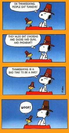 Woodstock and snoopy ♥ charlie brown thanksgiving, peanuts thanksgiving, thanksgiving quotes, happy thanksgiving