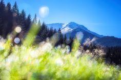 kontrasty – widok z kościeliskiej Photo Wall, Mountains, Nature, Travel, Photograph, Naturaleza, Viajes, Destinations, Traveling
