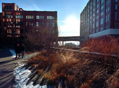 Photo of the Week: The Sun a Spark | The High Line Blog
