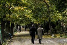 Autumn road Sidewalk, Autumn, Pictures, Photos, Fall Season, Side Walkway, Walkway, Fall, Walkways
