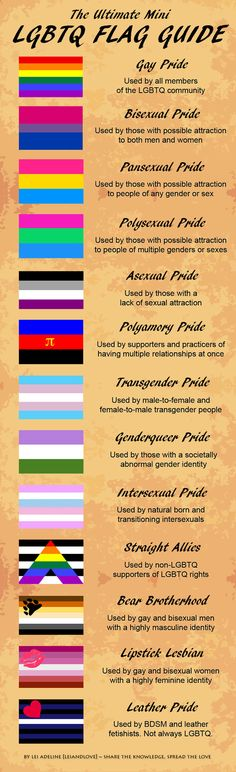 The Ultimate Mini LGBTQ Flag Guide More