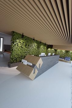 Reception desk, green wall