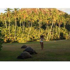 in Seychelles