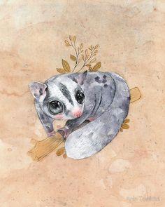 rodent rodents animals possum possums 8 clip art animals cartoon possum tattoo. Black Bedroom Furniture Sets. Home Design Ideas