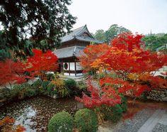 宝福寺 - 岡山県観光総合サイト おかやま旅ネット|岡山県観光連盟