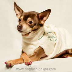 54 best dog fashion spa products images on pinterest dog 100 cotton dog bathrobe to help dry the dog after bath solutioingenieria