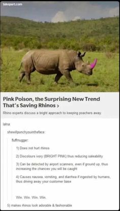 Now if only all the other countries would participate in saving the rhinos...