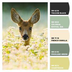 love.  paint colors from http://letschipit.com