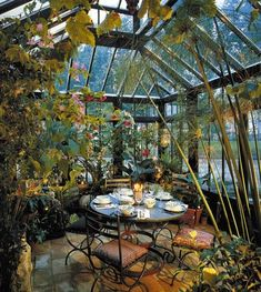 tropical garden...oh how I would love to have a greenhouse attached to my home to grow beautiful favorites #conservatorygreenhouse