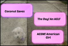 AGSM: Coconut Saves The Day! AGLF American girl!