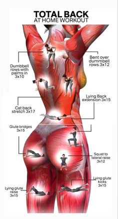 Back Fat Workout, Gym Workout Tips, Fitness Workout For Women, Workout Challenge, Fitness Diet, Workout Videos, Yoga Fitness, Health Fitness, Physical Fitness