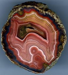 Minerals And Gemstones, Rocks And Minerals, Lake Superior Agates, Special Pictures, Beautiful Rocks, Petrified Wood, Rocks And Gems, Stones And Crystals, Geology