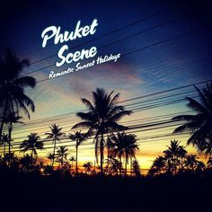 Phuket Travel, Phuket Hotels, Beach Hotels, Beach Resorts, Bars And Clubs, Phuket Thailand, Night Life, Like4like, Scene