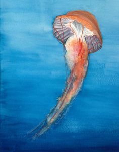 'Ocean Sea Life Sea Shells' Oil Painting Print on Canvas in White
