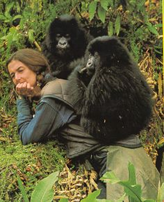 dian fossey with pair of gorillas