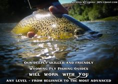 Wyoming Fly Fishing Guides for the Wind River, Snake River, Green River and Bighorn - Take your pick!