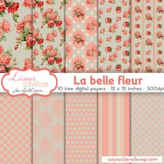 Shabby Chic free digital paper – La Belle Fleur by lianaShabby Chic free digital paper with roses pattern, damask background, stripes, dots and honeycomb geometric patterns, perfect for any shabby chic scrapbook layout. Free Digital Scrapbooking, Digital Scrapbook Paper, Digital Paper Freebie, Printable Scrapbook Paper, Papel Scrapbook, Printable Paper, Digital Papers, Papel Vintage, Vintage Paper