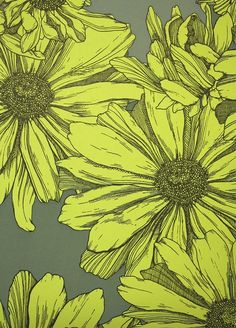 Cosmo Wallpaper A hand illustrated style contemporary floral wallpaper featuring yellow flowers on a khaki grey background.