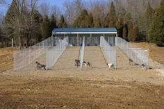 Imagini pentru dog kennel plans