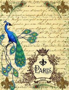 Vintage French Le Fleur Peacock Journal 8.5x11 Fabric Image Transfer Collage