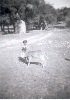 """Olivia Martinez Clements with pet fawn named """"Brownie"""" in Spring Branch (Check out the outhouse in the background)."""