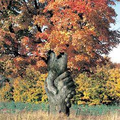 enchanted Nature View, Nature Pictures, Mother Nature, Mother Earth, Wood Sculpture, Garden Sculpture, Mabon, Samhain, Douglas Adams
