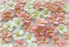 Piped Royal Icing Flowers // Cookie Crumbs