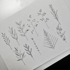 De nouvelles petites branches à adopter ! Mail me : norako.tattoo@gmail ou MP…