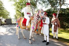 Looking for Wedding Horse, Ghori, Ghodiwala? Browse for all your wedding needs. Wedding Planner Guide, Online Wedding Planner, Indian Wedding Planner, Wedding Planning, Horse Wedding, Event Management, Marriage, Traditional, Valentines Day Weddings
