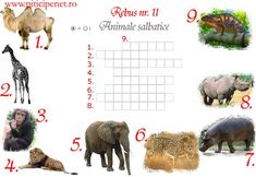 Maths Puzzles, Kids Education, Homeschool, Activities, Early Education, Math Puzzles Brain Teasers, Homeschooling