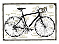 """9x12 photographic reproduction print of the Bicycle Diagram illustration from the book """"Bike Snob"""" (Chronicle, 2010).  This print is signed by Chris Koelle."""