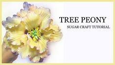 How to Make A Sugar Peony Tutorial: Yellow Tree Peony - Gumpaste - YouTube Gumpaste Peony Tutorial #gumpaste #peony #tutorial #sugar #tree