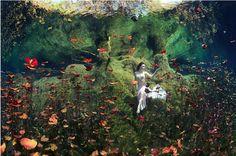 Anatoly Beloschin アナトリー・ベロンシュン ロシアの水中幻想カメラマン | デザインブログ バードヤード