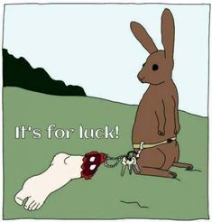 shows that superstition among lagomorphs is still fairly rare, thank goodness.Research shows that superstition among lagomorphs is still fairly rare, thank goodness. Vegan Memes, Vegan Quotes, Vegan Humor, Vegan Funny, Somebunny Loves You, Arte Sketchbook, Stop Animal Cruelty, Vegan Animals, Animal Rights