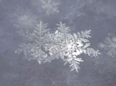 Amazing snowflake photo by Julie Falk (Click on photo to visit photostream in Flickr)