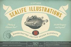 100 Vintage Sealife Illustrations by The Beacon Collection on Creative Market – Animal Planet Vintage Nautical, Retro Vintage, Vintage Graphic, Illustrations Vintage, Sea Snail, Sea And Ocean, Life Design, Fun At Work, Nice To Meet