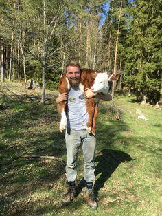 Simon från Sydtyrol med kalven Fiona #sweden #farmlife #småland #workawaymoment