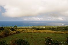 Up country Hawaii