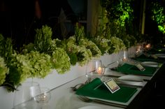 Rectangular centrepiece - ideal for a banquet table. Fresh green and white theme.  Bringing the outdoors inside.
