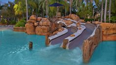 Bay Diapositivas | Typhoon Lagoon Atracciones | Walt Disney World Resort