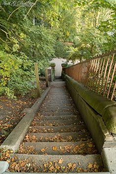 Steps going down to Avenham Park
