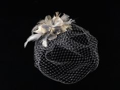 Delicate Cage Veil
